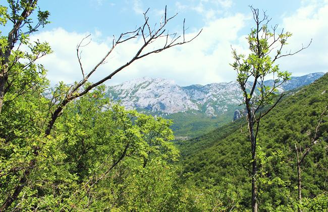 croatie-itineraire-paklenika-02