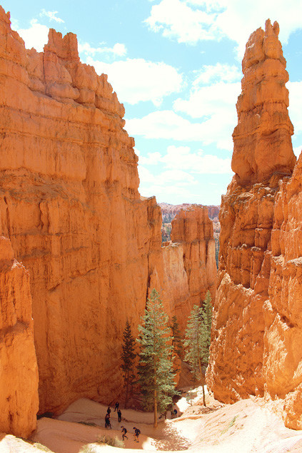 etats-unis-bryce-canyon-queens-navajo-loop-8