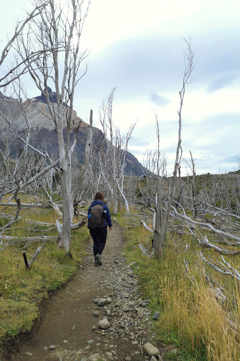 guide-trek-w-torres-del-paine-jour-2-3