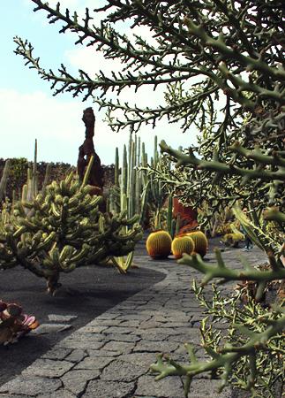 lanzarote-jardin-de-cactus-07
