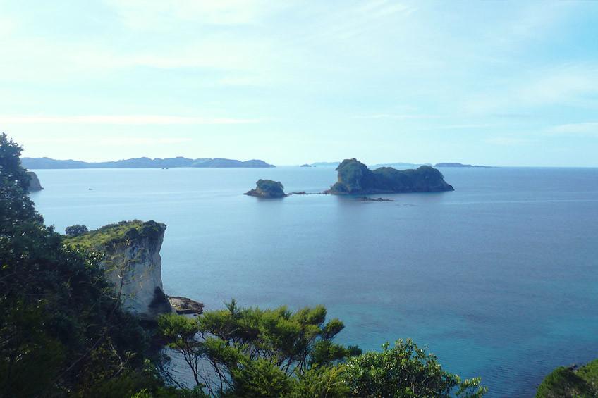 nouvelle-zelande-visiter-coromandel01