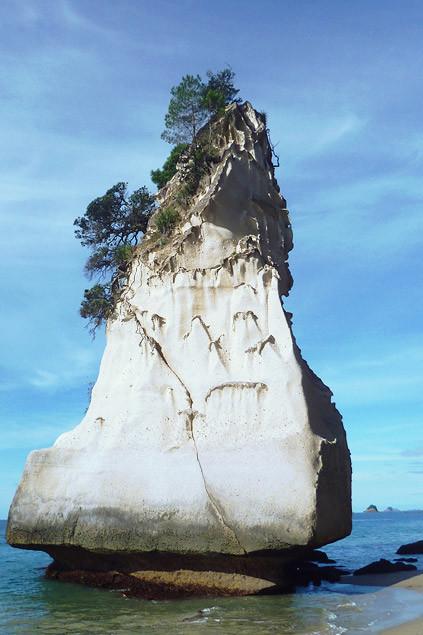 nouvelle-zelande-visiter-coromandel13