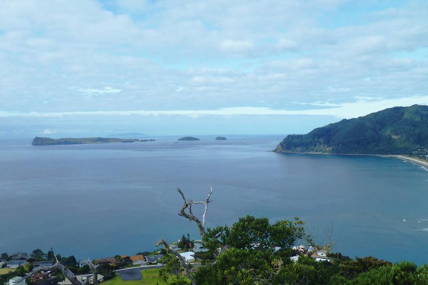 nouvelle-zelande-visiter-coromandel6