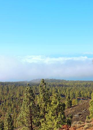 Le volcan Teide, un incontournable à Ténérife