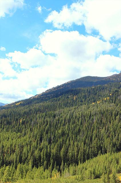 USA : Grand Teton National Park & Jackson dans le Wyoming