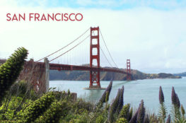 USA : Que faire à San Francisco en 2 jours ?