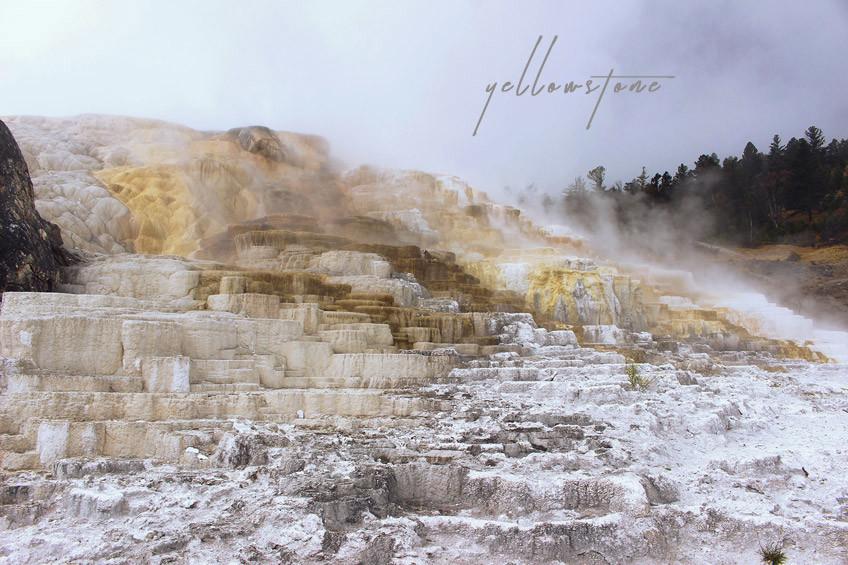 yellowstone-secteur-norris-mammoth-hot-springs-lamar-valley-header