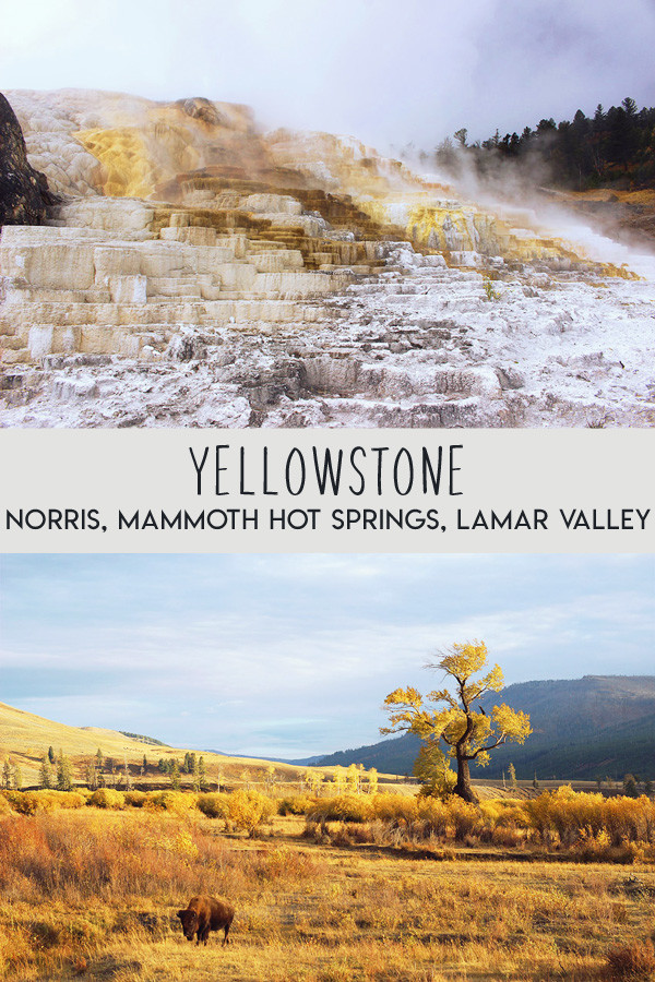 yellowstone-secteur-norris-mammoth-hot-springs-lamar-valley-pinterest-01
