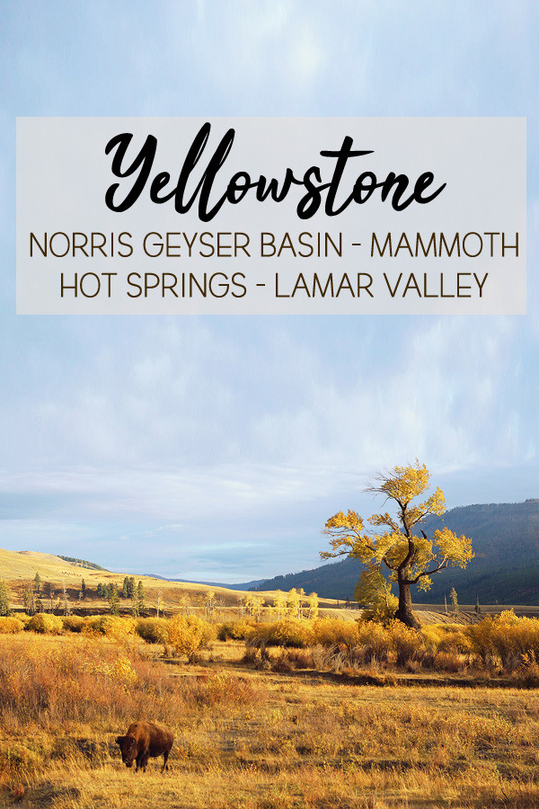 yellowstone-secteur-norris-mammoth-hot-springs-lamar-valley-pinterest-02