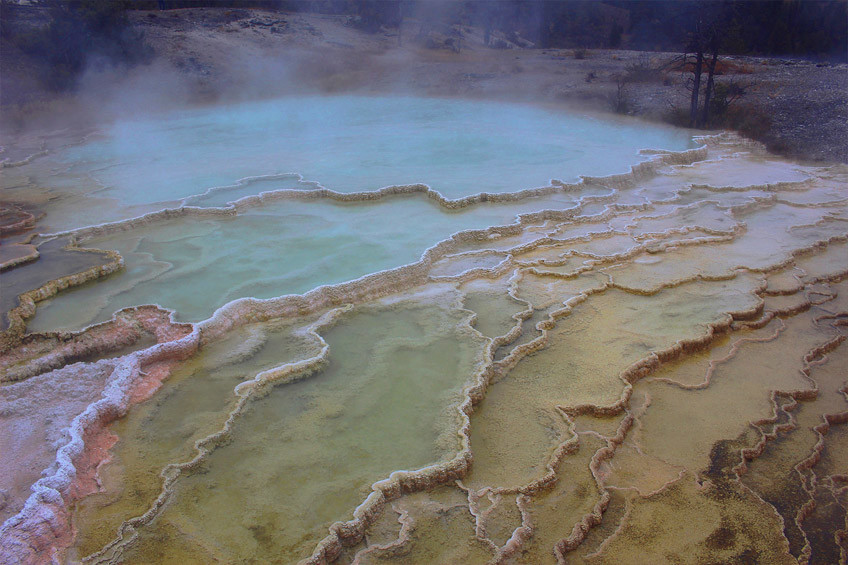 yellowstone-secteur-norris-mammoth-hot-springs-lamar-valley10