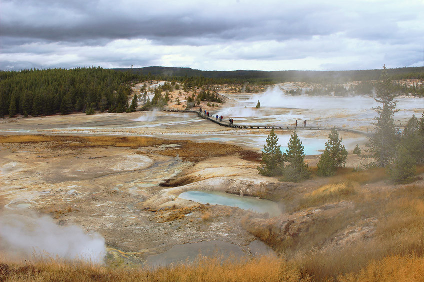 yellowstone-secteur-norris-mammoth-hot-springs-lamar-valley2