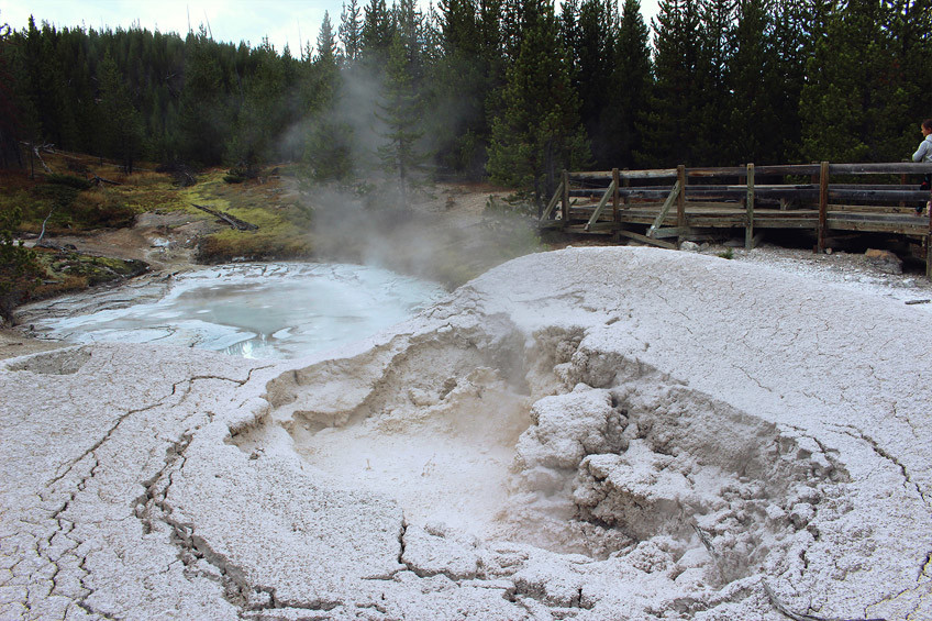 yellowstone-secteur-norris-mammoth-hot-springs-lamar-valley23