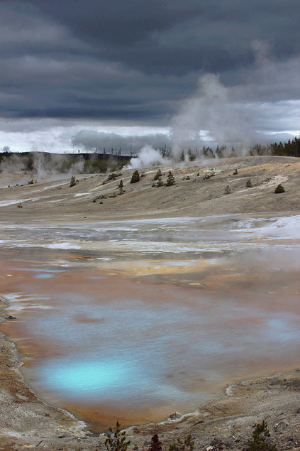 yellowstone-secteur-norris-mammoth-hot-springs-lamar-valley4