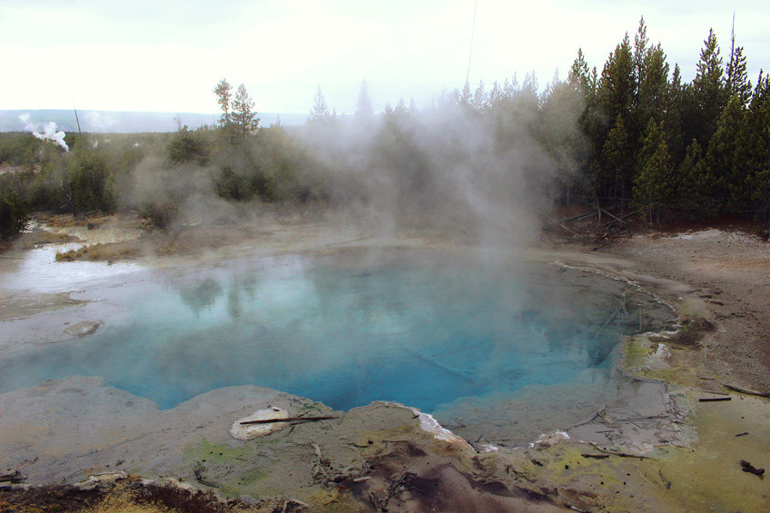 yellowstone-secteur-norris-mammoth-hot-springs-lamar-valley5